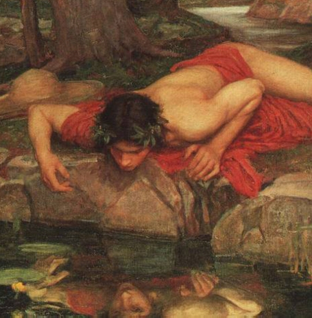 Narcissus_cropped